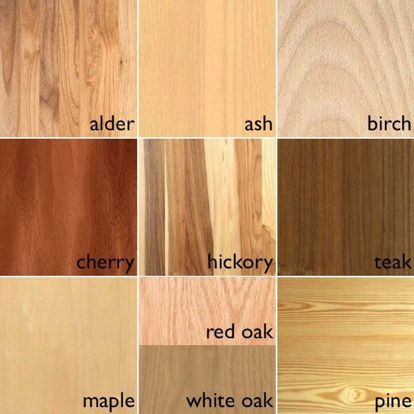 wood species pictures