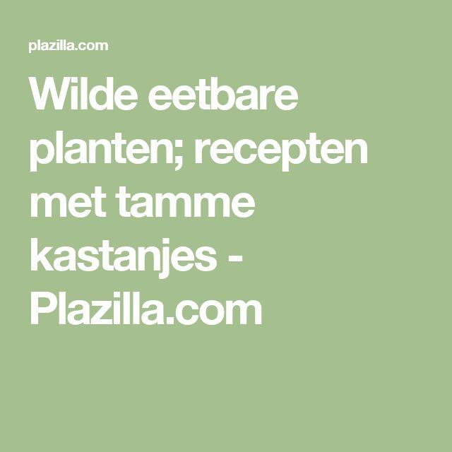 Wilde eetbare planten; recepten met tamme kastanjes - Plazilla.com