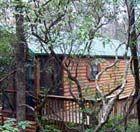 Solitude Pointe Cabin Rentals In Upstate South Carolina