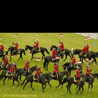 RCMP Musical Ride; an amazing show!