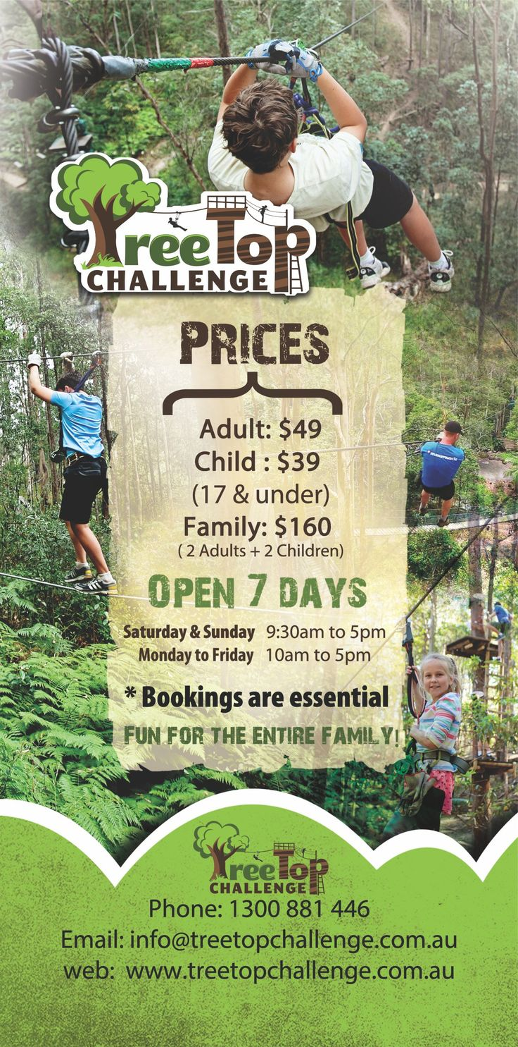 Ever wanted to climb the Trees? Try the Treetops challenge today and climb, fly and have fun amongst the trees in Tamborine Mountain. Book your tickets now http://ticketsandtours.com.au/travel/tree-top-challenge/