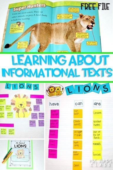 Informational text features lessons for reading and writing while studying lions! Through close reading students study the features on non-fiction books. Comprehension lessons on building schema, inferring, and opinion writing includes anchor charts and crafts for added engagement.