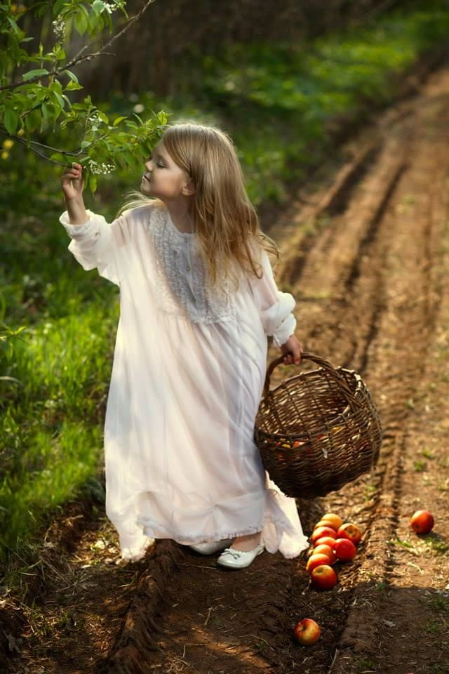 ... about I Luv Apples on Pinterest | Orchards, Apples and Apple tree