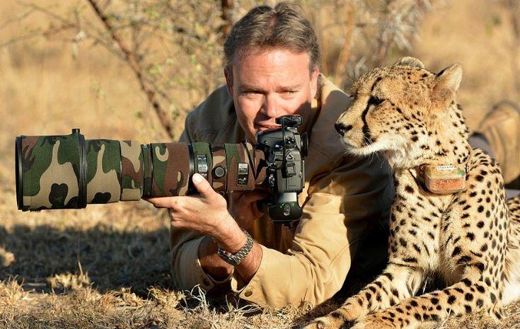Chita surpreende fotógrafo ao dar espiadinha em câmera após ser fotografada