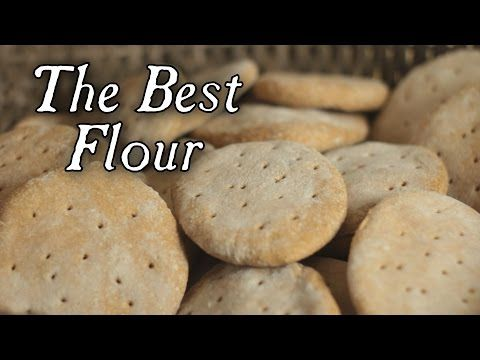 Q & A  The Best Flour for Ship Biscuits