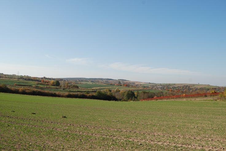 Widok z międzypola fortów nr IXa i Xb na ich przedpole.