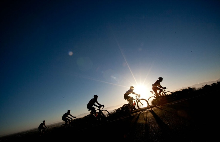 Beautiful scenery! Cape Argus Cycle Tour: Great White Shark Tours...
