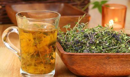 Le thym pour combattre la toux (entre autres) + comment le cueillir, le conserver et recette de tisane et sirop maison
