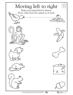 Connect the animal to its food - Worksheets & Activities | GreatSchools
