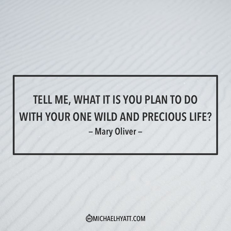 """Tell me, what is it you plan to do with your one wild and precious life?"" -Mary Oliver https://michaelhyatt.com/shareable-images"