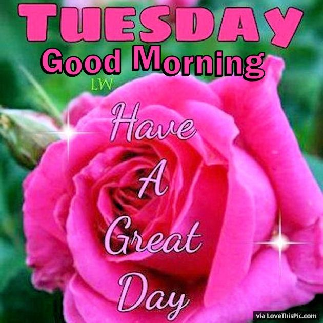 Tuesday Good Morning Have A Great Day Tuesday Pinterest Good