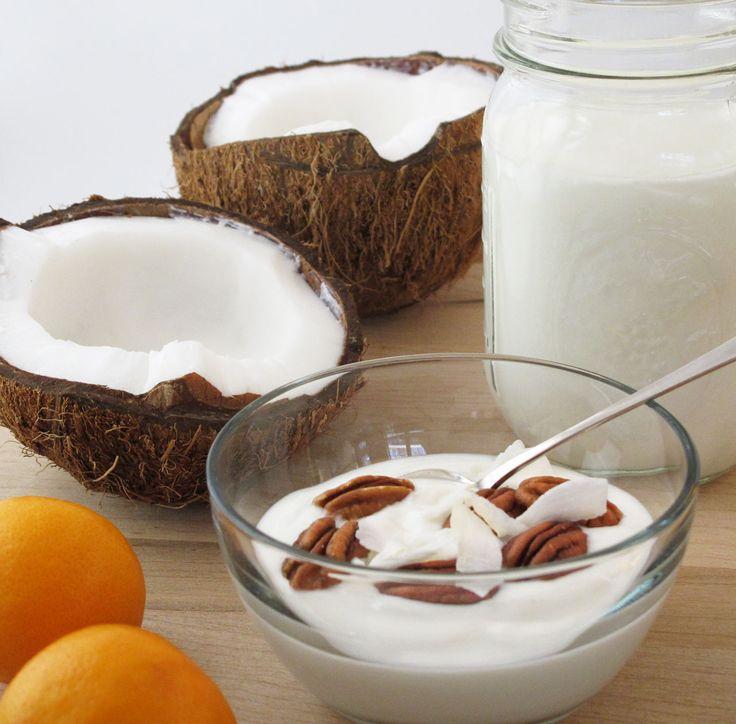 por que não fazer o seu próprio iogurte em casa, que vai ser probiótico de verdade, e ainda usar leites vegetais, evitando assim todo o sofrimento das vacas e dos bezerros, além de problemas de saúde por excesso de gordura saturada? É pra já! Hoje eu vou te apresentar uma receita de iogurte de leite de coco caseiro totalmente natural! O leite de coco é feito em casa, esta receita não precisa de iogurteira e também não precisará de probiótico de pózinho ou industrializado! Ou seja, este…