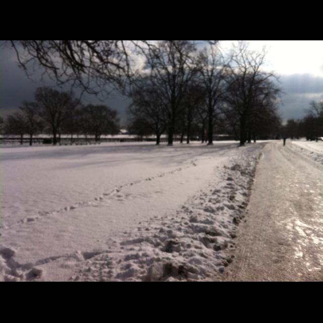 Running in a winter wonderland....
