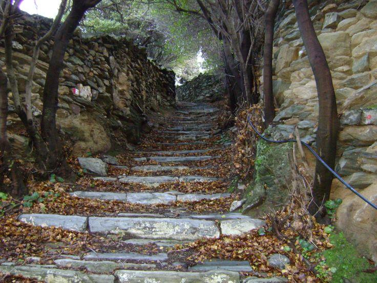 ο παλιός δρόμος Αποίκια Χώρα