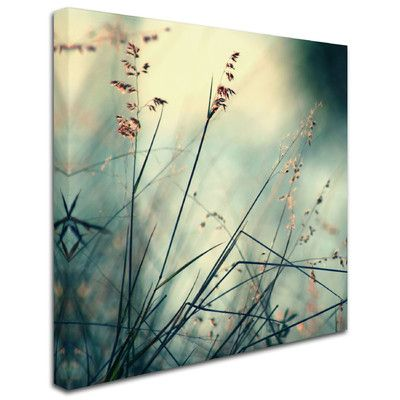 Trademark Fine Art 'About Hope' by Beata Czyzowska Young Photographic Print on…