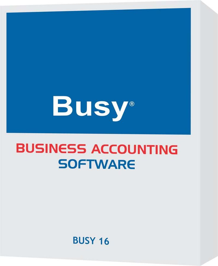 BUSY 16 Becomes the First Business Accounting Software to Provide the Latest DVAT e-Return Filing as Per Item Codes