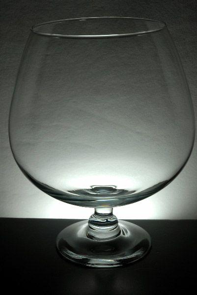 Brandy Gl Vases Large Gles 11 5 Mini Shrimparium Potential Holds Just Under 2 Gallons My Aquarium In 2018 Pinterest