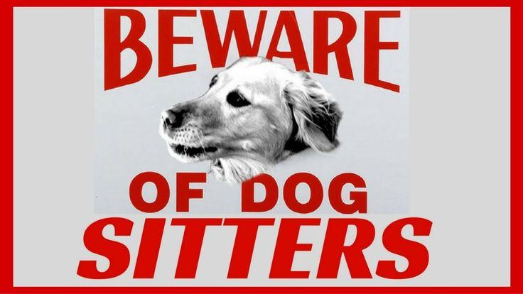 ATTENTI al CANE ?? O al DOG SITTER...!