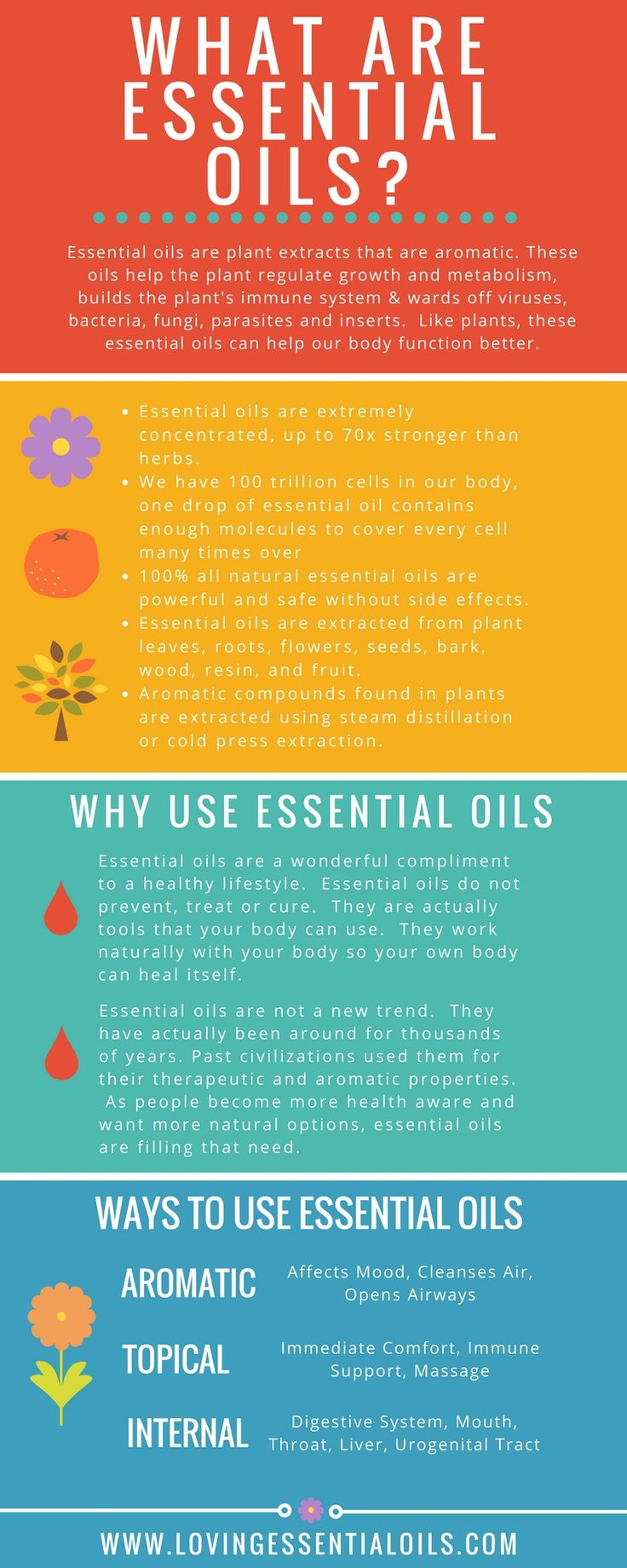 What Are Essential Oils Infographic - New to oils & aromatherapy? Learn more about essential oil here: http://www.lovingessentialoils.com/blogs/essential-oil-tips/what-are-essential-oils                                                                                                                                                                                 More