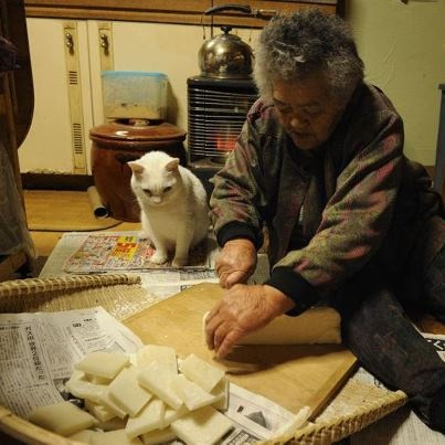 Miyoko Ihara has been taking photographs of her grandmother, Misao and her beloved cat Fukumaru since their relationship began in 2003. Their closeness has been captured through a series of lovely photographs. 12-13-12 / Miyoko Ihara