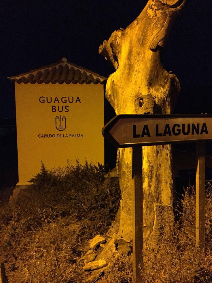 Guagua Bus La Palma