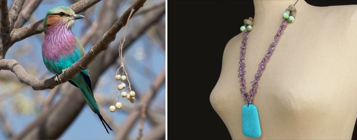 The Lilac-breasted Roller Necklace