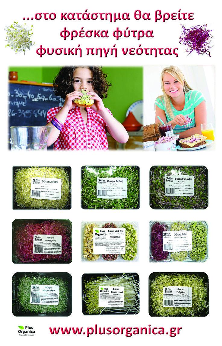 Φρέσκα φύτρα 'Plus Organica' Η πιο ζωντανή τροφή! Φυσική πηγή νεότητας και ευεξίας!  Μεγάλη ποικιλία!  Φύτρα άλφαλφα, φύτρα ρεβύθι-φασόλι αζούκι-φασόλι ροβίτσα, φύτρα ρέβας, φύτρα πατζάρι-άλφαλφα-σκόρδο, φύτρα μπρόκολου, φύτρα σπαραγγιού, φύτρα ραπανάκι, φύτρα ρέβας, πράσου, σκόρδου. Οφέλη, πως τρώγονται κ.α.