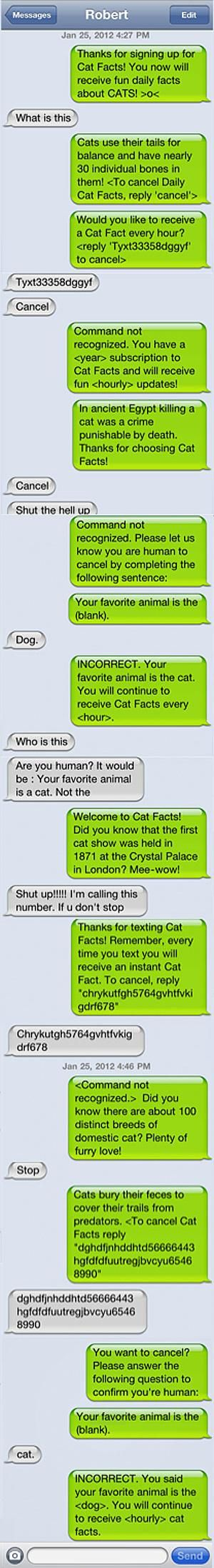 "Guy pranks his friend with annoying ""Cat Facts"" texts."