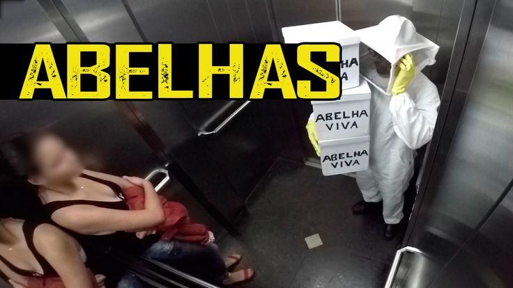 Broma: Enjambre de Abejas suelto en un elevador