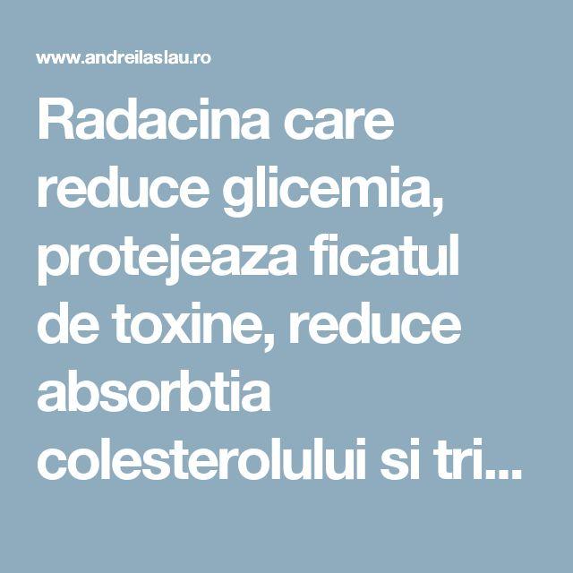 Radacina care reduce glicemia, protejeaza ficatul de toxine, reduce absorbtia colesterolului si trigliceridelor - dr. Andrei Laslău