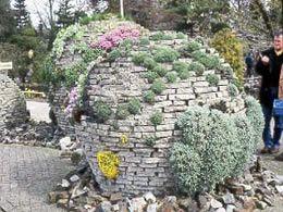stenen bollen met rotsplanten