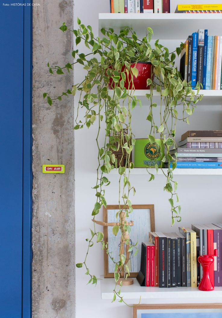09-decoracao-apartamento-pequeno-estante-tv-plantas-pendentes