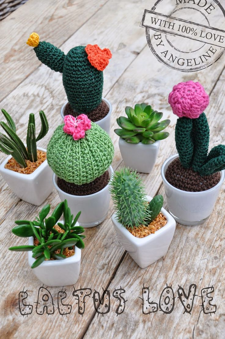 Crocheted some nice cactuses with link to the patterns on my blog!