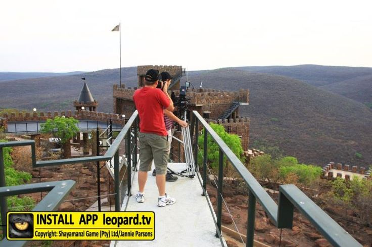 Photos from the recording of The Eyes of Secrets - music video! #leopardtv #music #wildlife