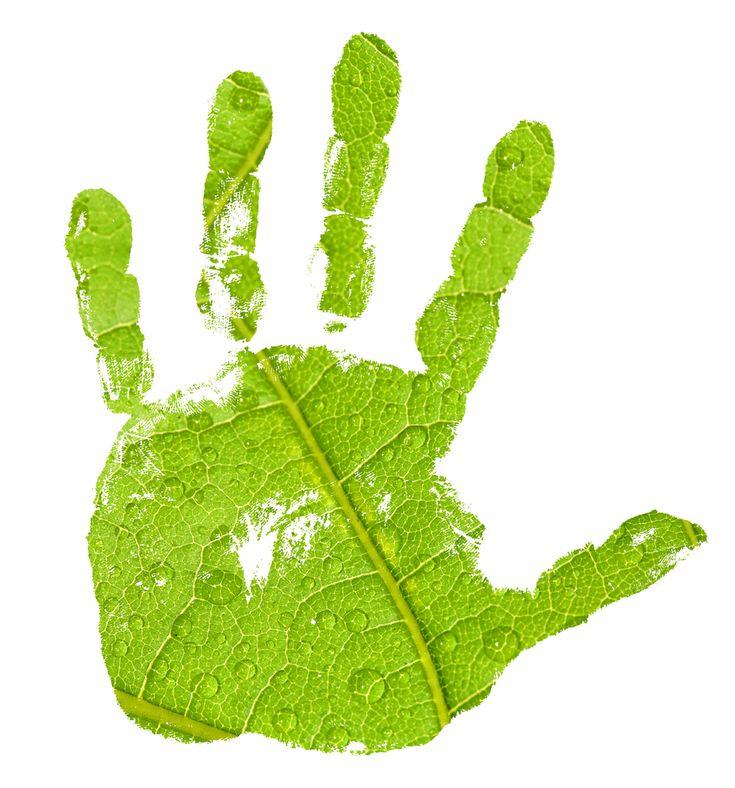 Minden  ami zöld: környezetvédelem  ökotudatos élet  fenntartható fejlődés. Tippek a nagyvilágból a klímaváltozás hatásainak enyhítésére  hé...