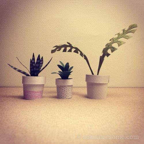 3 plants for the bedroom…