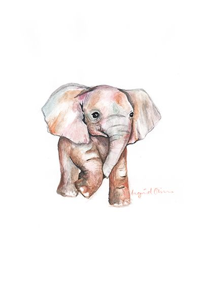 www.ingridoline.com   Elephant print, made by Ingrid Oline.   Elephant, art, love, elefant, animal, painting, gouach, giraffe, sketch, print, etsy, pro, talent, realistic, cartoon, frame, bolia, brown, yellow, pink, greek, marvel, stone, sculpture