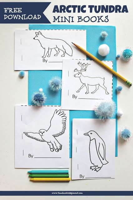 Arctic Animals Writing Prompts | Mini books, Writing and ...