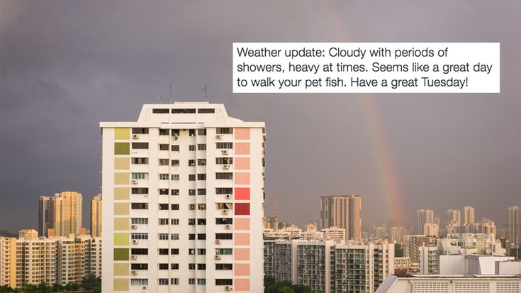 A newspaper is going wild with its weather tweets and people don't know what to think Image:  Mashable Composite/Shutterstock  By Yi Shu Ng2017-02-06 08:31:56 UTC  Its tough to get people excited about the weather.  And its even tougher in tropical Singapore where its pretty much only wet or dry every day.  So the countrys national newspaper appears to have taken it upon itself to spice up its weather updates by slipping in the odd quip and pop-culture reference:  Weather update: Thundery…