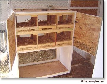 Chicken Nesting Boxes - why smaller nesting boxes are  better & sizes for construction
