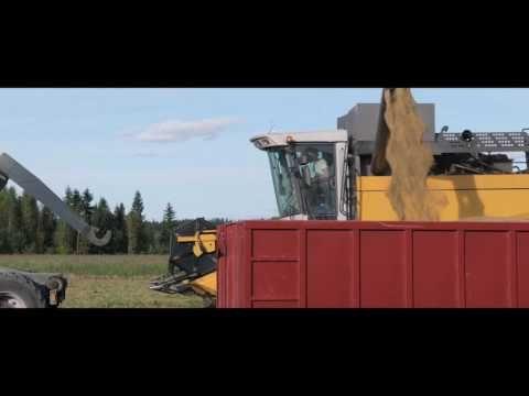 (50) Viljan reitti - YouTube