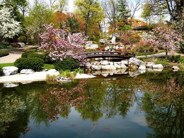 Image Detail For  Amazing Japanese Garden Design Ideas