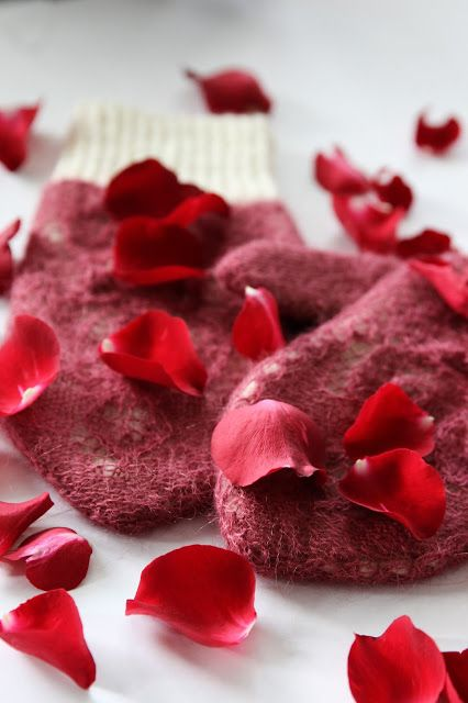 Rose petals on snow by Anna Johanna
