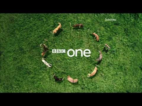 BBC One - Ident - Dog Display - (Short Edit) 2009 - YouTube