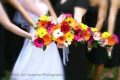 Gerber Daisy Bouquets...