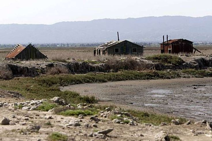 Historic buildings in Drawbridge Calif., an abandoned fishing and hunting community located on the Don Edwards San Francisco Bay National Wildlife Refuge near San Jose, are being naturally reclaimed by the south bay salt flats on Tuesday March 23, 2010. Photo: Mike Kepka, The Chronicle