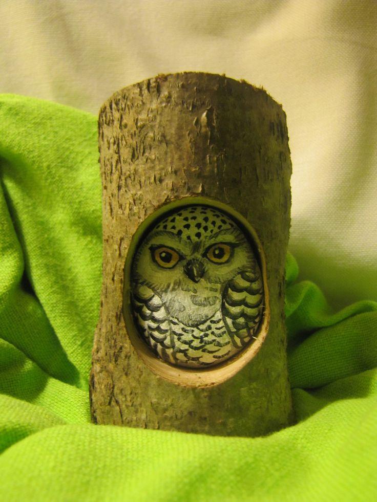 best 25  owl rocks ideas on pinterest