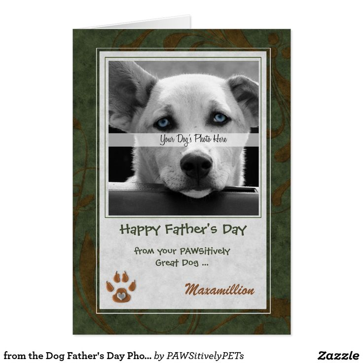 from the #Dog Father's Day Photo #Card