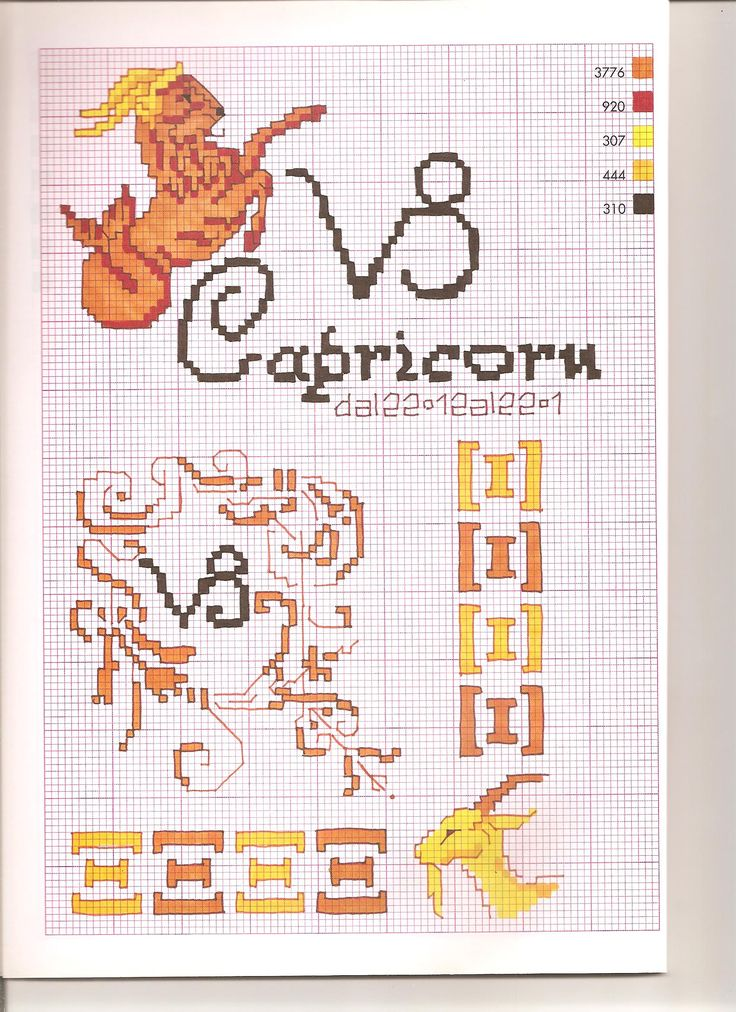 Borduurpatroon Sterrenbeeld Kruissteek *X-Stitch Pattern Zodiac ~Serie 3-1: Steenbok 23-12/20-01 *Capricorn~