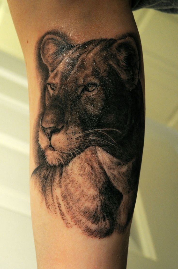 lioness tattoos | My new lioness tattoo! The artist was Kendall Vader at ... | Tattoos